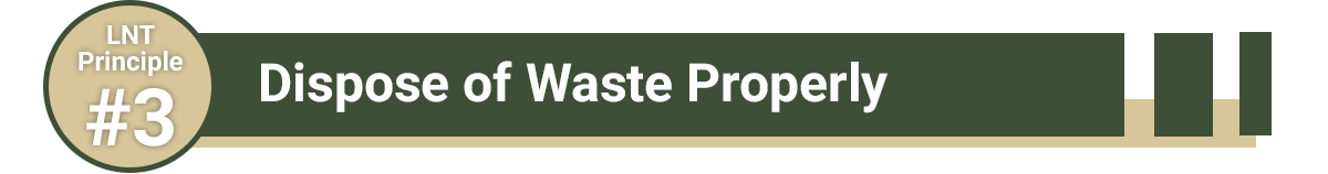 Dispose of Waste Properly