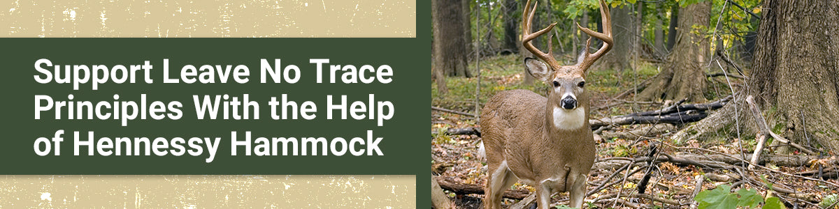 Support Leave No Trace Principles With the Help of Hennessy Hammock