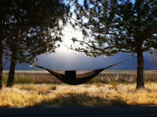 backlit hammock photo by cory