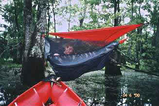 hammock over the swamp