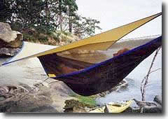 hammock over shoreline