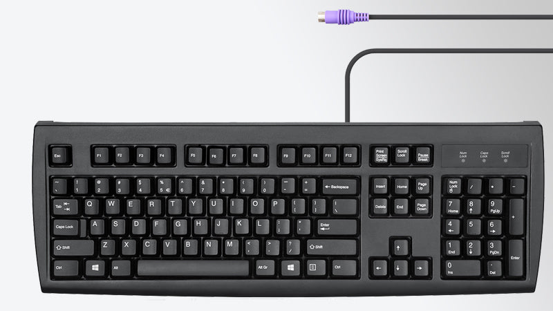 Your classic PS/2 keyboard
