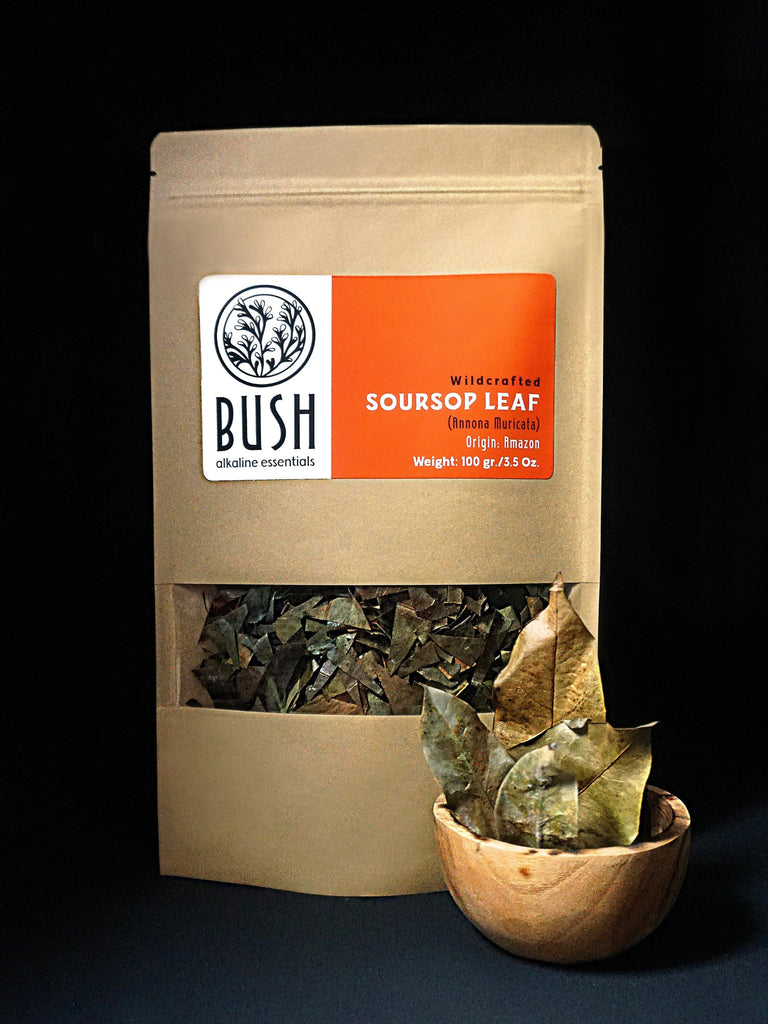 SOURSOP LEAF - Bush Alkaline Essentials