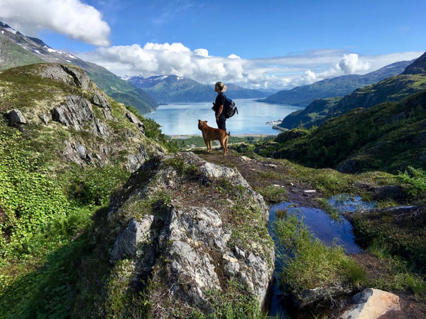 15 Phenomenal Alaska Hikes That'll Make You Crave Summer Like Crazy