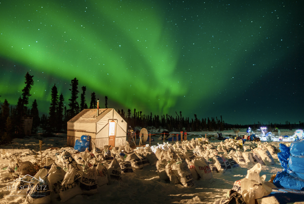 2019 Iditarod Coverage -- Day 5
