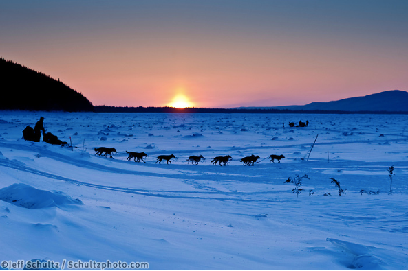 Iditarod 2020 - March 10th