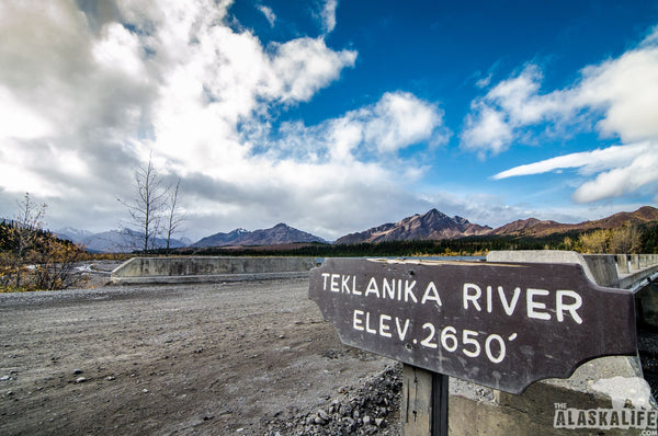 Teklanika River: Your Backstage Pass to Denali National Park and Preserve