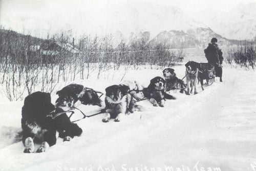 sled dog mail in the early days - dog race - heinie snider