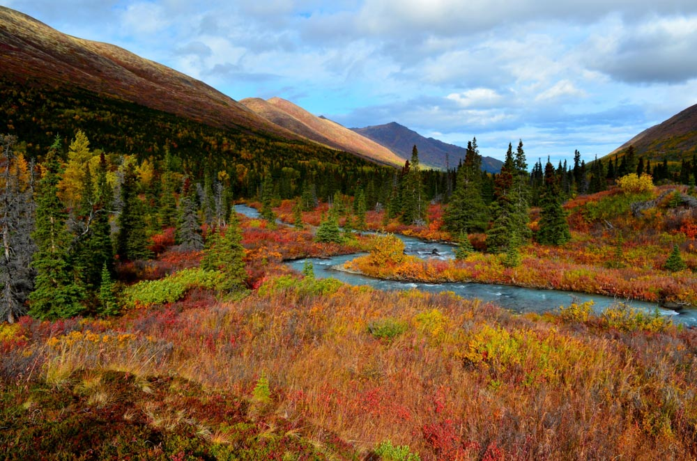 South Fork in the Fall Brent Reynolds Photography
