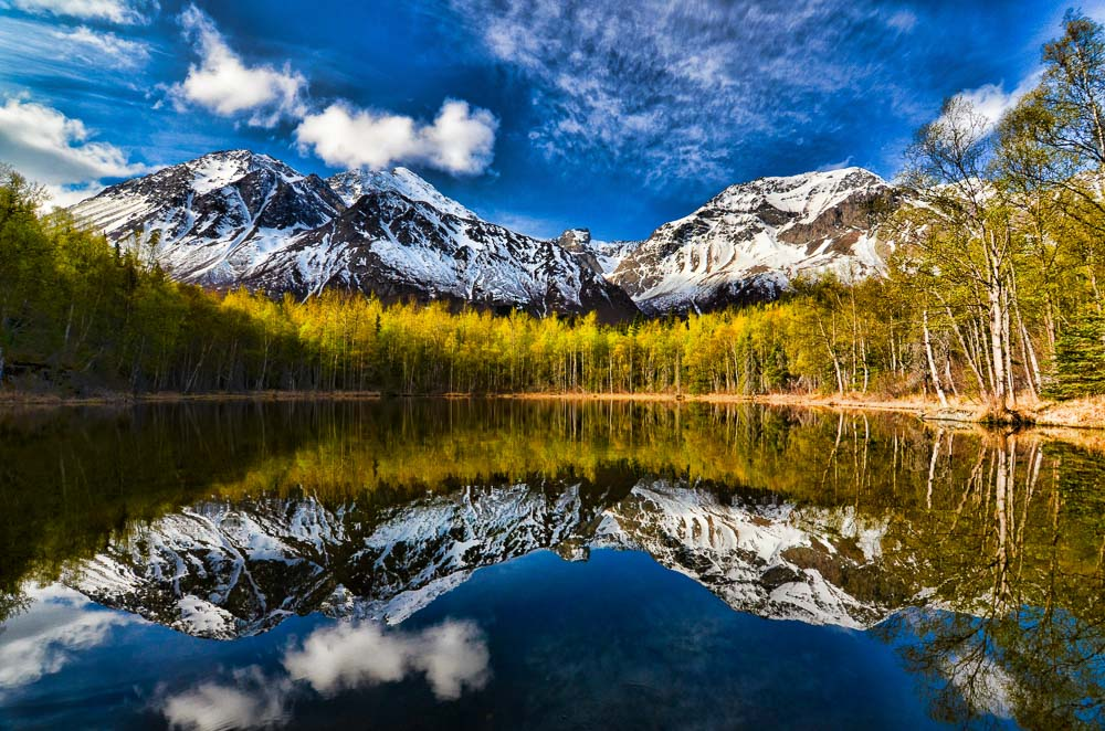 Spring Reflections Brent Reynolds Photography