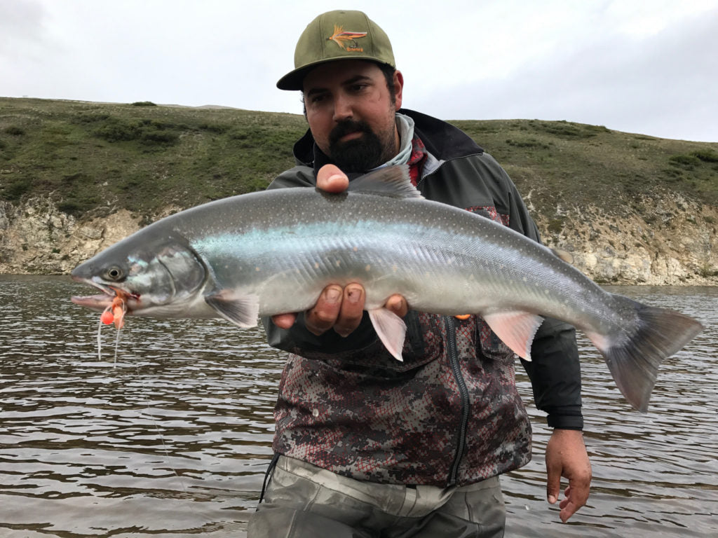 Wulik River Dolly Varden on the Fly
