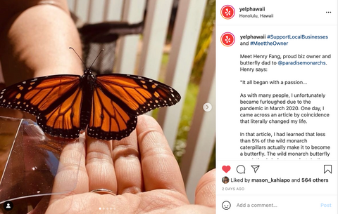 Paradise monarchs featured on Yelp Hawaii Instagram page