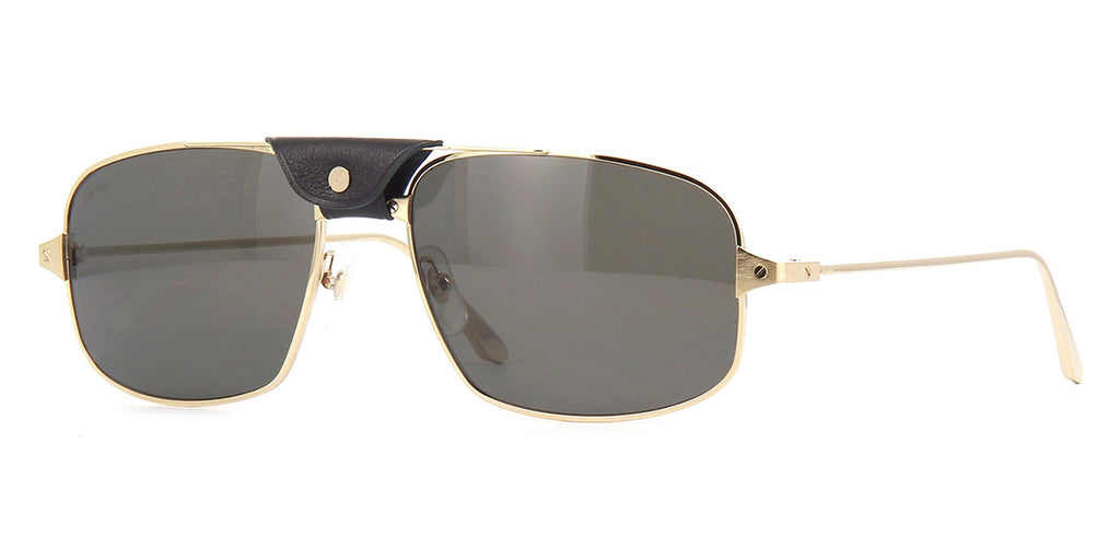 cartier ct0193s 001 polarised