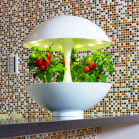 Eliooo : How to Go to Ikea and Build a Device to Grow Food in Your Apartment