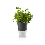 Self Watering Herb Pot - grey