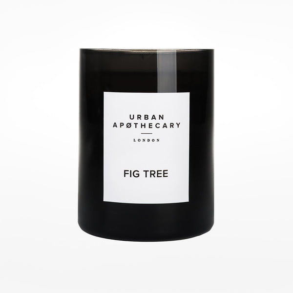 Candle - fig tree