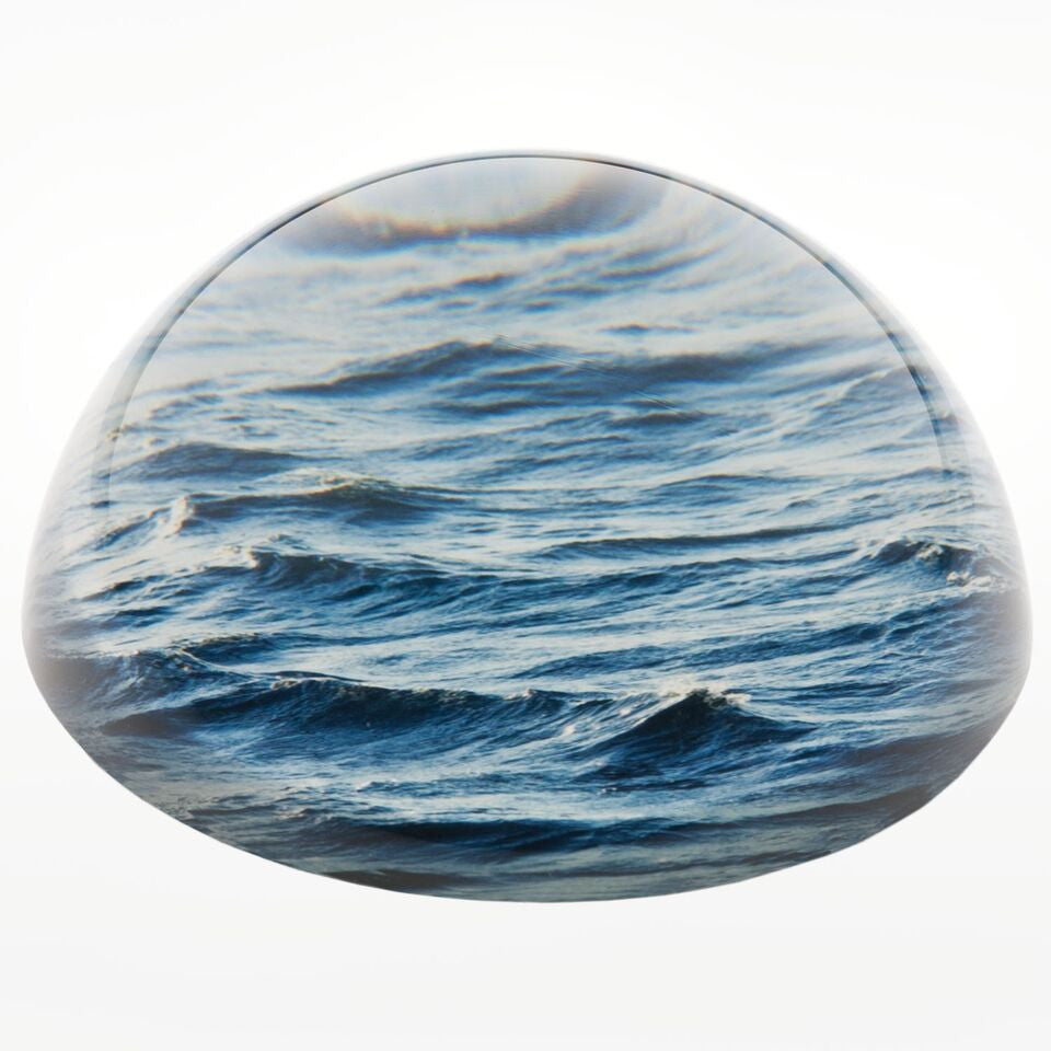 The School of Life sea paperweight