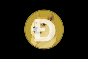 Doge Coin Apparel