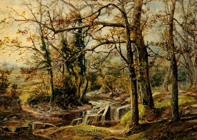 Brook Scene, Endcliffe Woods