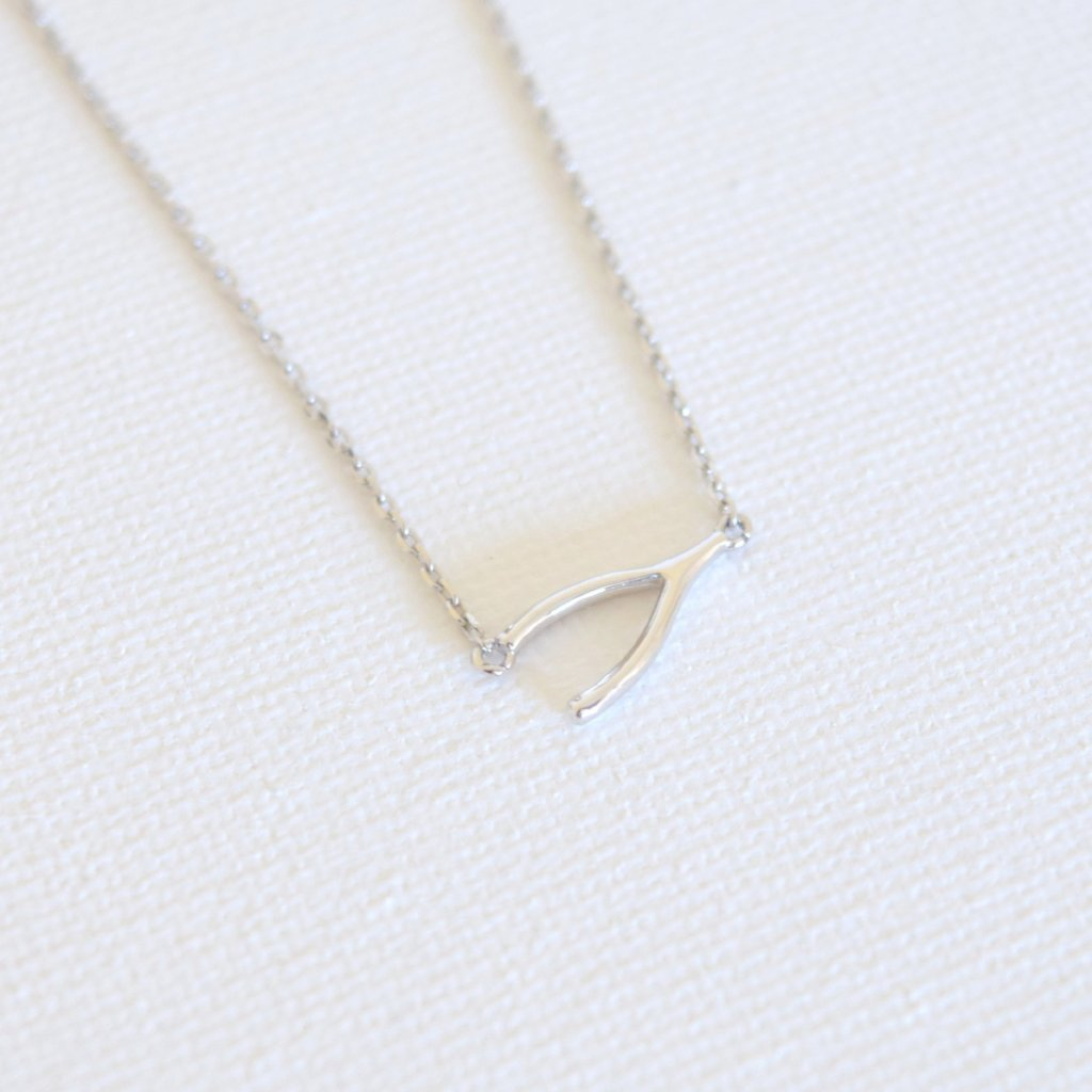 Wish Necklace - Silver