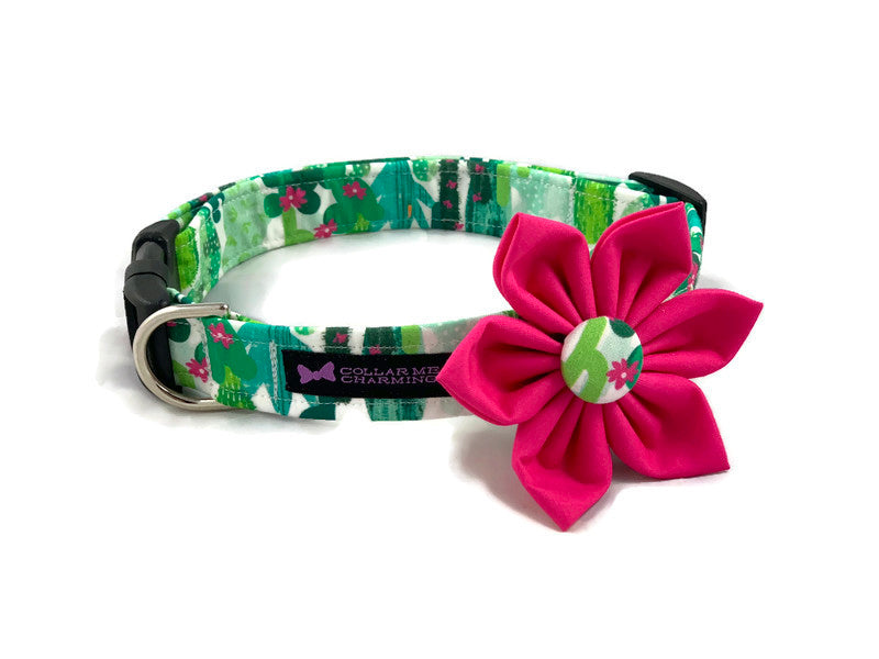 Dog Collar Flower Set Cacti