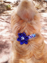 Load image into Gallery viewer, Purple Dog Collar Flower Set Madison
