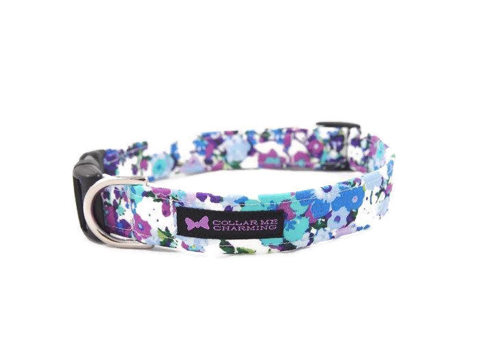 Dog Collar Madison