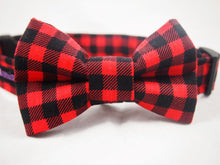 Load image into Gallery viewer, Dog Collar Bow Tie Set Brawny