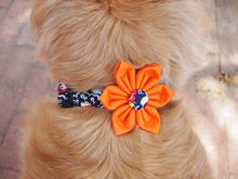 Load image into Gallery viewer, Dog Collar Flower Set Dandi