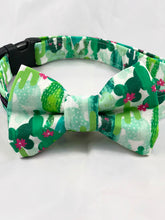Load image into Gallery viewer, Dog Collar Bow Tie Set Cacti
