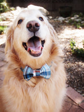 Load image into Gallery viewer, Plaid Dog Collar Bow Tie Set Marshall