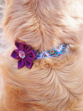 Load image into Gallery viewer, Dog Collar Flower Set Vintage
