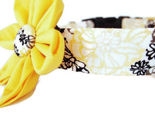 Load image into Gallery viewer, Yellow Dog Collar Flower Set Blossom