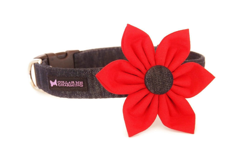 Dog Collar Flower Set Dashing Denim
