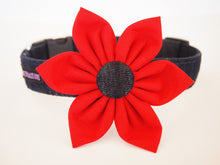 Load image into Gallery viewer, Dog Collar Flower Set Dashing Denim