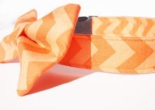 Load image into Gallery viewer, Chevron Dog Collar Bow Tie Set - Orange