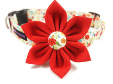 Load image into Gallery viewer, Dog Collar Flower Set Sophie