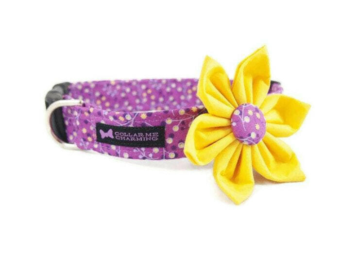 Dog Collar Flower Set Dolly