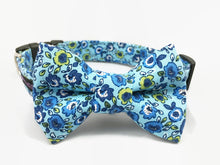 Load image into Gallery viewer, Floral Blue Dog Collar Bow Tie Set Preston