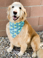 Load image into Gallery viewer, Chick Magnet Bandana