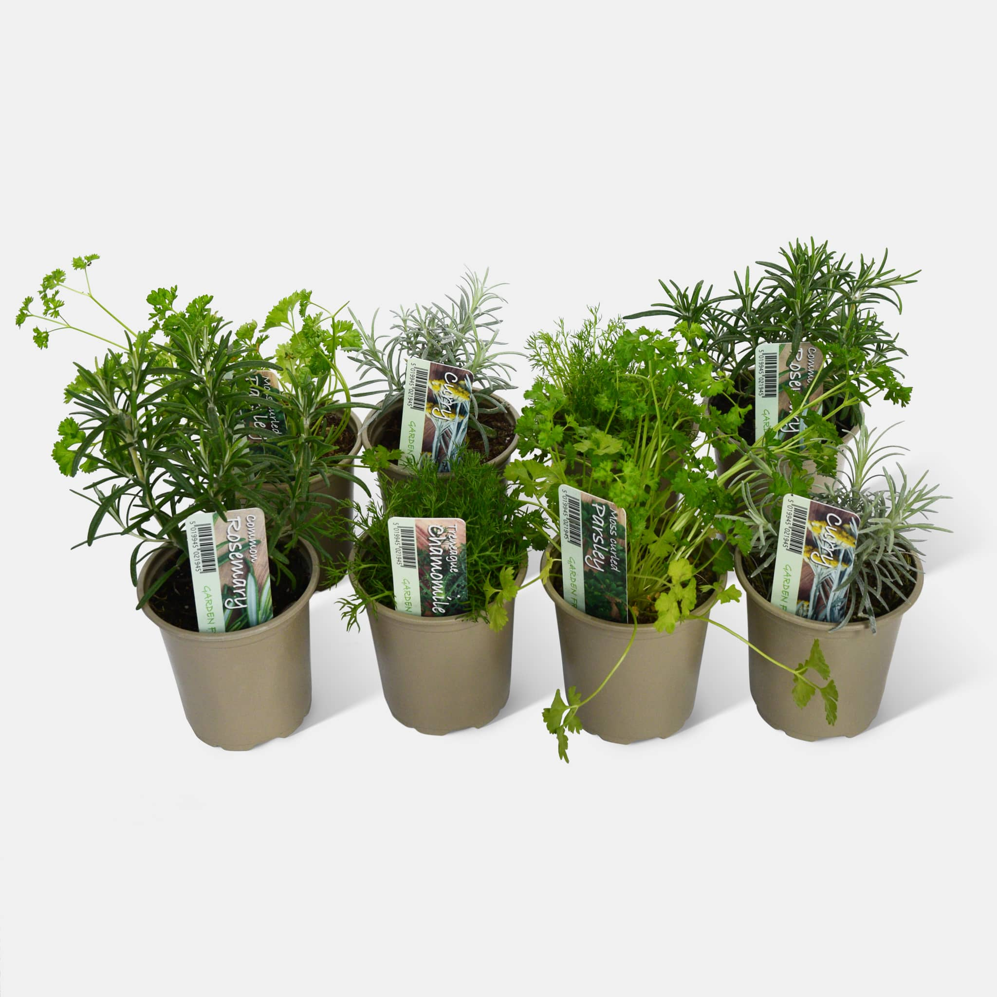 Kitchen Classics Herb Pack