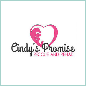 CINDY'S PROMISE RESCUE & REHAB