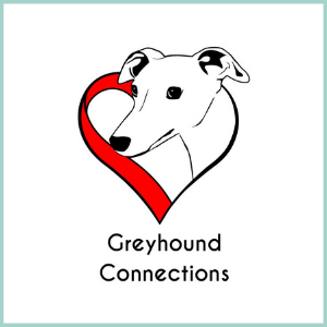 GREYHOUND CONNECTIONS