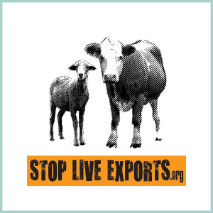 STOP LIVE EXPORTS