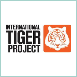 THE INTERNATIONAL TIGER PROJECT