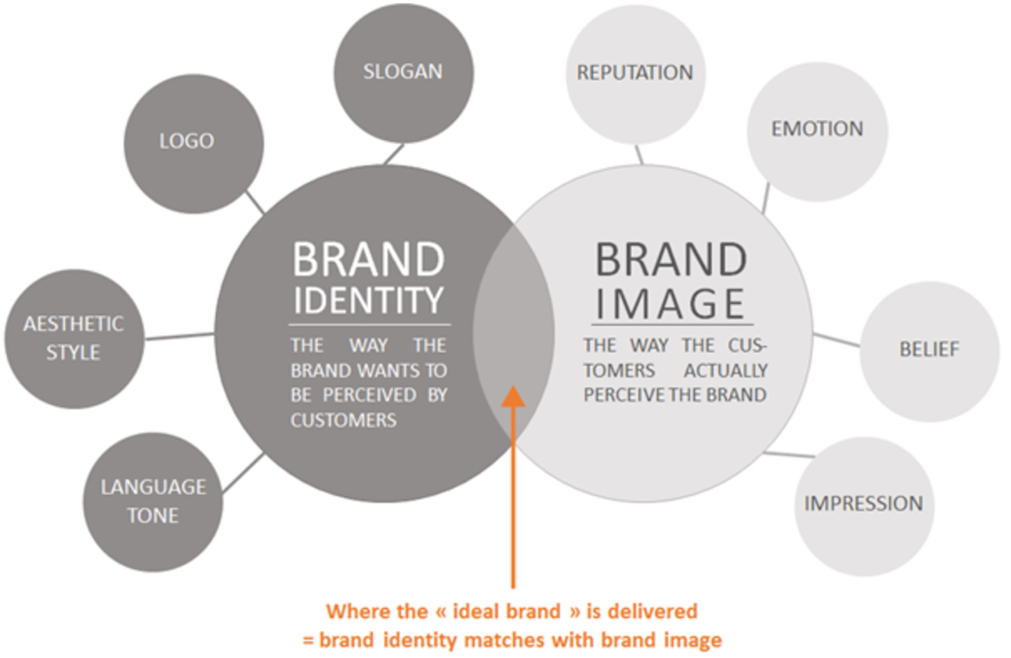 Visual Language: Brand Perception