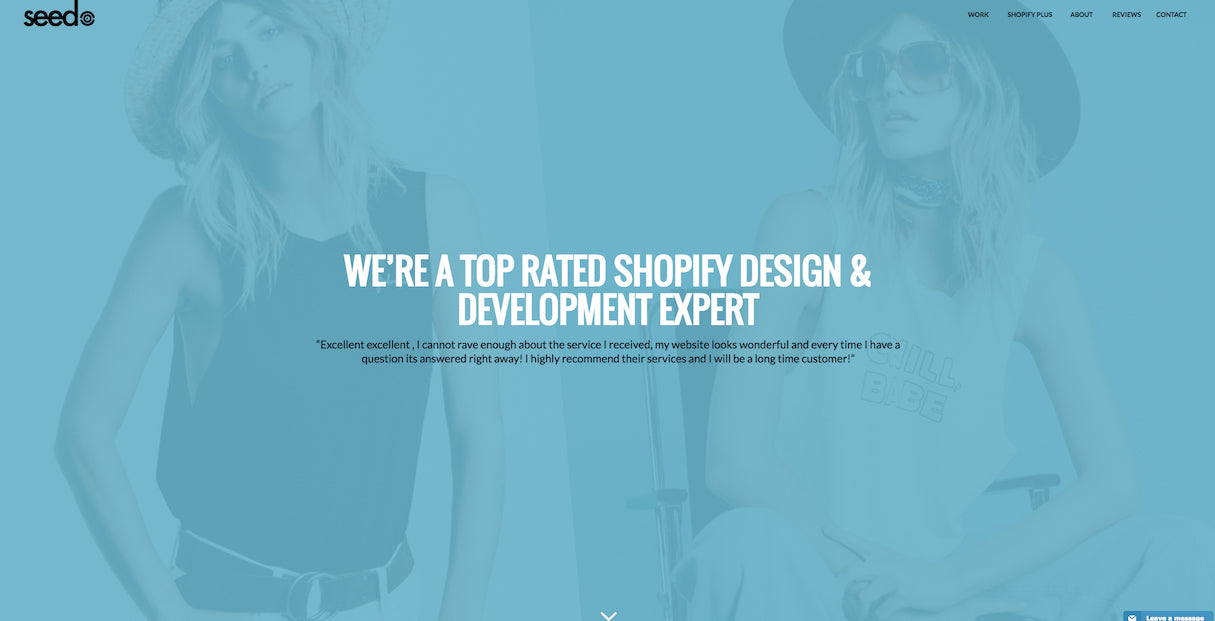 beautiful portfolio websites: SeedCMS agency portfolio design