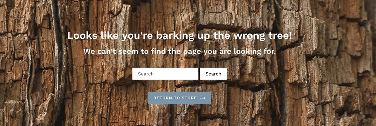 best 404 pages: search bar
