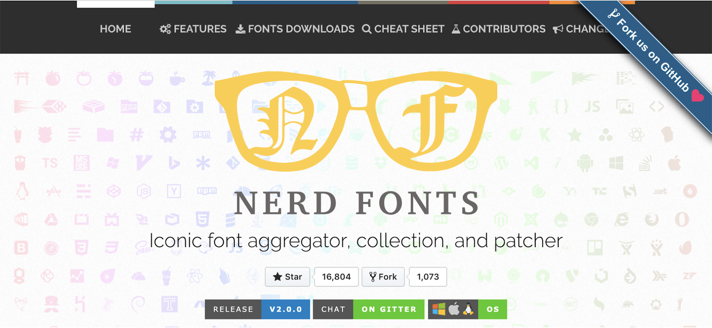 customize terminal: nerd fonts