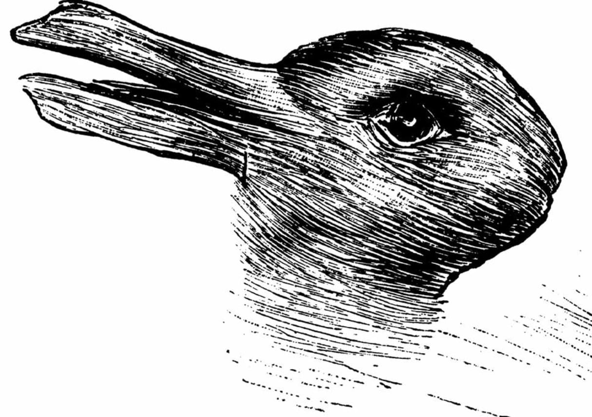 perceptual set: duck rabbit